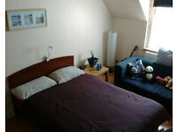 Double room to let in August only