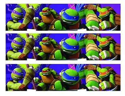 Ninja Turtles Cake Decorations (TMNT Teenage Mutant Ninja Turtles edible cake strips cake topper)