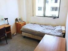 MUST SEE!! Bright & Furnished Room to let - Maroubra Junction Maroubra Eastern Suburbs Preview