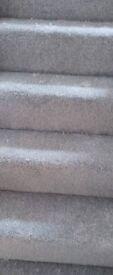 carpet runner 8ft x 10ft