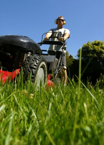 How to Buy a Used Petrol Cylinder Lawnmower