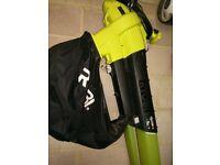 Ryobi Leaf Blower / Vacuum