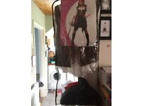 Woman's Pirate Costume - XL (22-24)