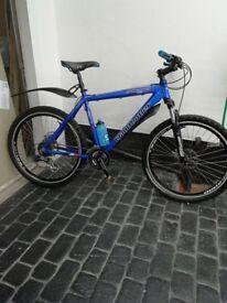 20 inch frame Claud Bulter Bike