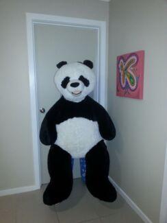 Giant Panda Werribee Wyndham Area Preview