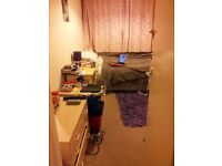 Lovely single room is available