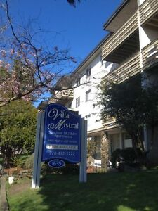 1 bd - New kitchen & appliances - Heat & HW included, updated!