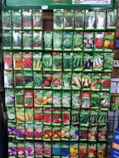 Herbs, vegetables & flowering Seeds Wanneroo Wanneroo Area Preview