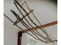 Handmade Driftwood Light