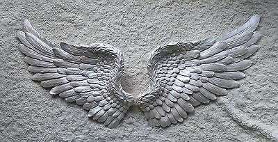 Angel Wings  White Pearl  Large
