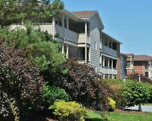 Direct Outdoor Access, Pet Friendly 1 Bedroom Apartment