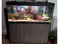 Fluval 240L Fish Tank 4 foot