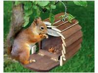 Squirrel Hotel