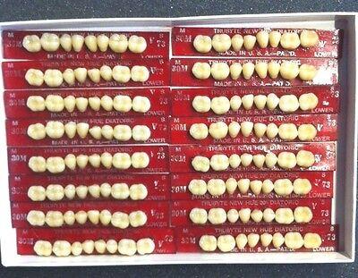 Dentsply New Hue Dentist Dental Lab Porcelain Denture Teeth  30m  L 73b4