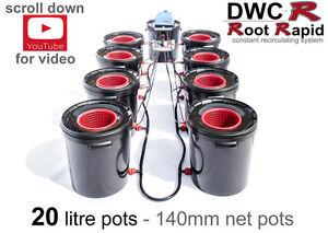 8 POT DWC R Root Rapid DEEP WATER CULTURE Bubble Oxy Bubbler Hydroponics not IWS