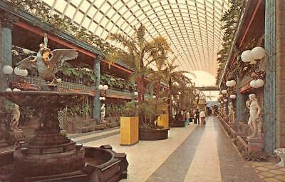 CLEARWATER BEACH, FL Florida KAPOK TREE INN MALL Atrium~Trees ROADSIDE  (Mall Clearwater)