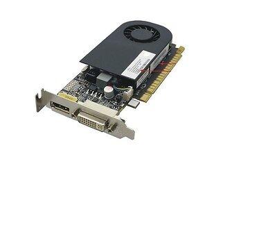 2GB nVIDIA GeForce GT630 PCI-E DVI DisplayPort Low Profile Bracket Video Card