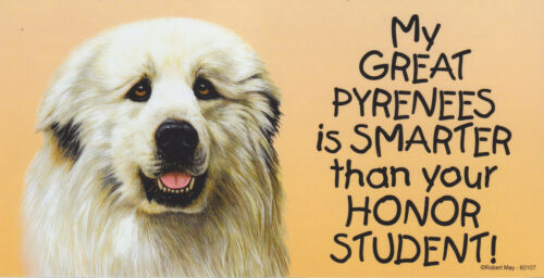 My GREAT PYRENEES is SMARTER than your HONOR STUDENT car/fridge MAGNET 4X8