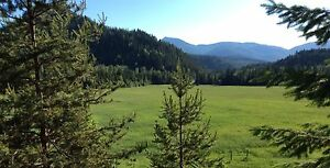 Beautiful 75.85 acre hay and  horse property