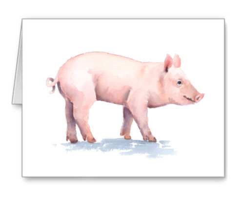 Pig Note Cards With Envelopes