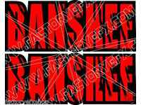 Banshee Rear Fender Graphics Decals Stickers 350 TWIN ATV Quad Custom White 465