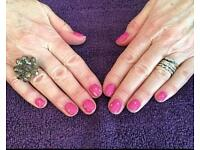 Shellac polish - manicures - pedicures - lash & brow treatments- waxing - threading
