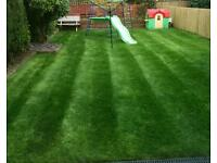 Grass and Hedges cutting service