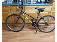 Universal hybrid bike. Very good condition and full working order.