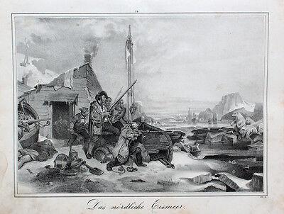 Eismeer Nordpol Eisbär Arktis Forscher Kolonist Ice Bear Segelschiff Eisscholle