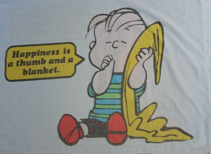 Vintage 1971 Peanuts Snoopy Sleeping Bag & Linus Thumb Blanket Pillowcase