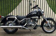 Suzuki VL250 Intruder,LAMS,Cruiser,$3900,may trade road bike. Launceston Launceston Area Preview