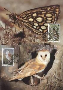 GB Jersey 1989 Mi MK 480-83 WWF Animals Sowa Owl Eule Butterfly Schmetterling - <span itemprop='availableAtOrFrom'> Dabrowa, Polska</span> - GB Jersey 1989 Mi MK 480-83 WWF Animals Sowa Owl Eule Butterfly Schmetterling -  Dabrowa, Polska