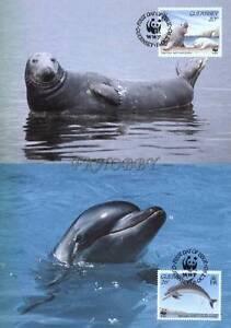 GB Guernsey 1990 Mi MK 497-00 WWF Animals Pets Seal Dolphin Shark Whale Delfin - <span itemprop='availableAtOrFrom'> Dabrowa, Polska</span> - GB Guernsey 1990 Mi MK 497-00 WWF Animals Pets Seal Dolphin Shark Whale Delfin -  Dabrowa, Polska
