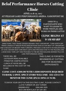 Cutting Clinic - Come learn to work cattle!