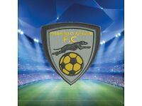 Shawfield Athletic A.F.C