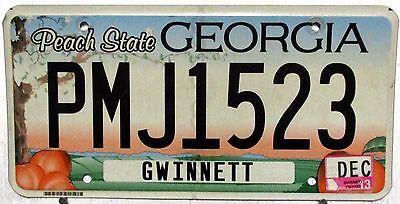 2013 Georgia license plates tag Peaches Gwinnett PMJ1523 dogwood flat man cave