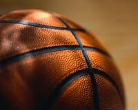 Muskoka Men's Basketball League