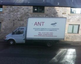 ANT Removals - Insects not included.