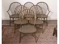 Very rare, set of six Ercol Mid-Century Latimer Model 909 Dining Chairs