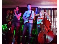 Double bass player wanted for Treetops (blues/soul band)