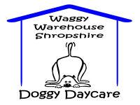 Waggy Warehouse Shropshire