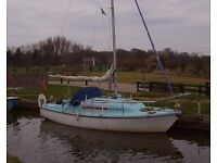 YACHT : SEAL 22 Mk3 1976 lifting keel sailing cruiser with outboard motor, trailer. £2500