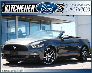 2016 Ford Mustang EcoBoost Premium **RWD/CAMERA/NAVI/HTD&CLD...