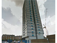 Exclusive 2 bedroom fully furnished flat in Stratford, E15. **very close location to Olympic Park**