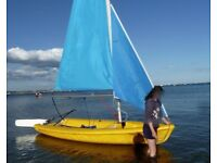Laser Pico Sailing Dinghy with New Storage Cover and a Launching Trolley.