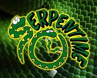 Serpentime Reptile Zoo for Birthday parties and much more