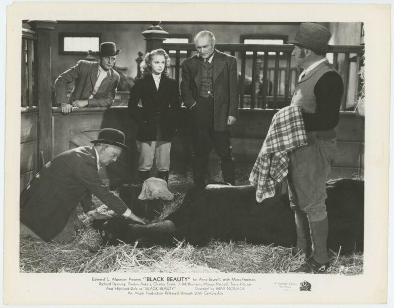 MONA FREEMAN original movie photo 1946 BLACK BEAUTY