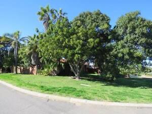 Large Retro Style 3 Bedroom, 1 Bathroom Family Home, Twin Carport Geraldton Geraldton City Preview