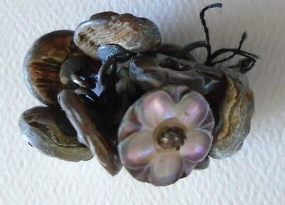 Antique Victorian Carved Flower  Pearl Shell Shank Buttons a set of 10
