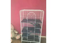 Lovely cage for small animals